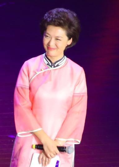 前央视主持人海霞穿旗袍参加活动,时代华娱表示气色不减当年!